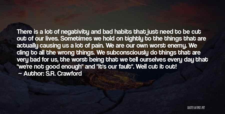 One Day Being Good Enough Quotes By S.R. Crawford
