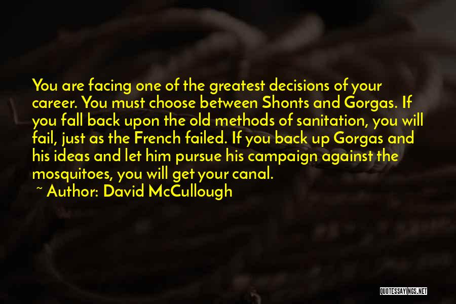 One Must Fall Quotes By David McCullough