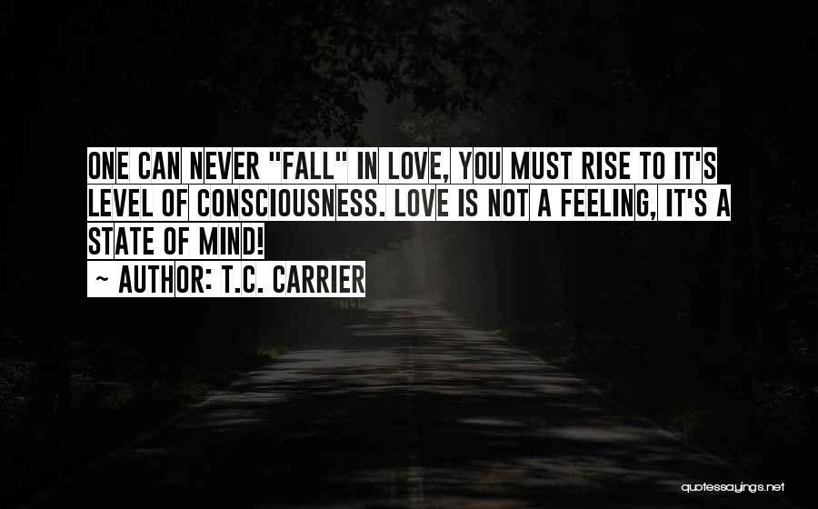 One Must Fall Quotes By T.C. Carrier