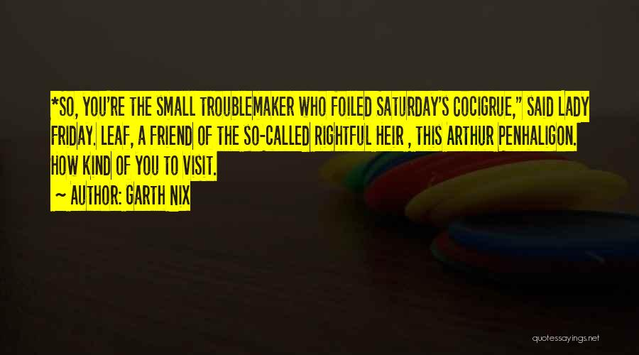 One Of A Kind Best Friend Quotes By Garth Nix