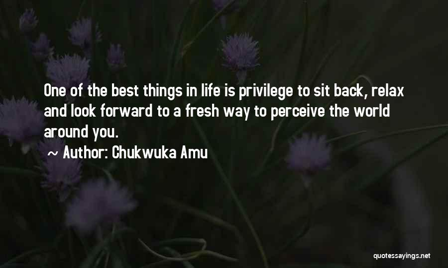 One Of The Best Things In Life Quotes By Chukwuka Amu