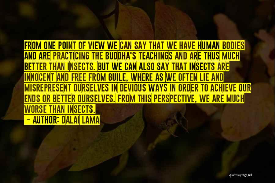 One Point Perspective Quotes By Dalai Lama