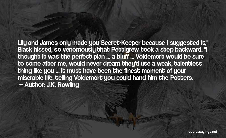 One Step Backward Quotes By J.K. Rowling