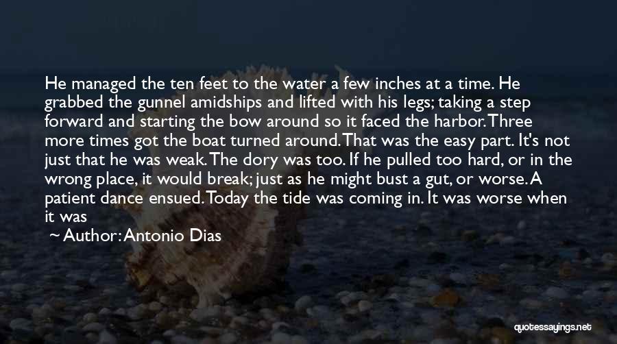 One Step Forward Quotes By Antonio Dias