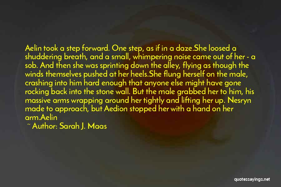 One Step Forward Quotes By Sarah J. Maas