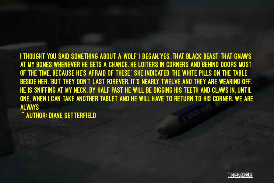 One Time Chance Quotes By Diane Setterfield