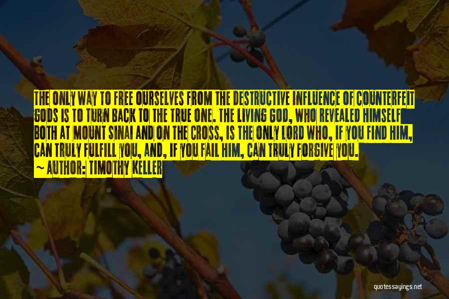 One True God Quotes By Timothy Keller