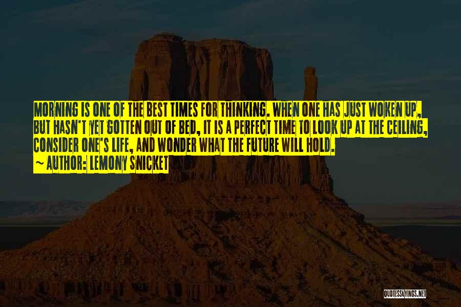 One's Future Quotes By Lemony Snicket