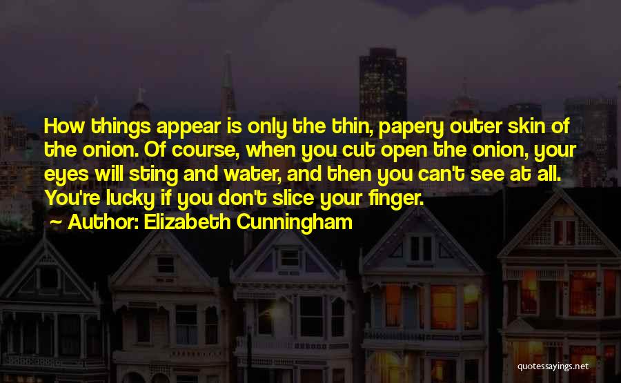 Onion Skin Quotes By Elizabeth Cunningham