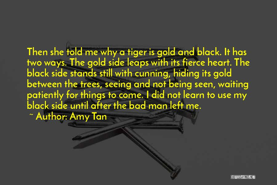 Only Seeing One Side Quotes By Amy Tan