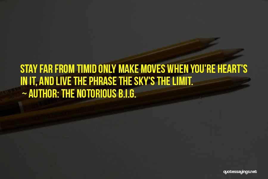 Only Sky's The Limit Quotes By The Notorious B.I.G.