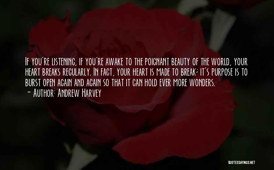 Open My Heart Again Quotes By Andrew Harvey
