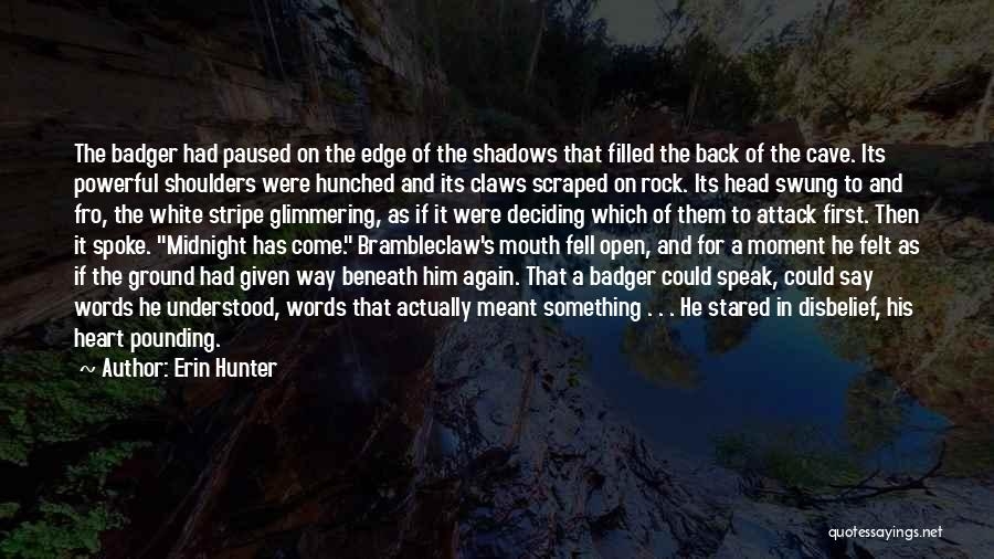 Open My Heart Again Quotes By Erin Hunter