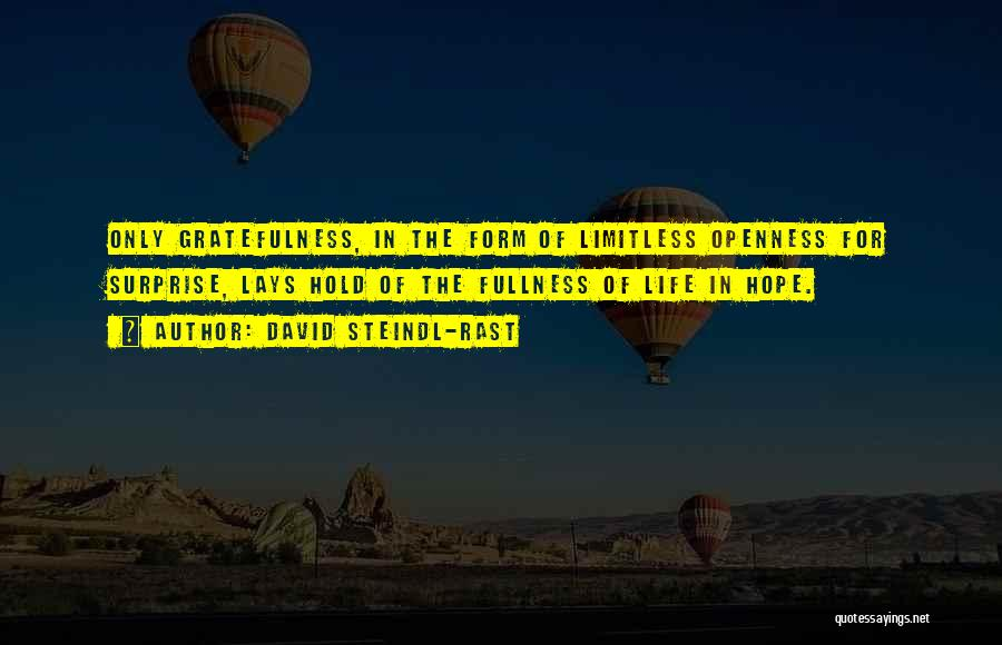 Openness Quotes By David Steindl-Rast