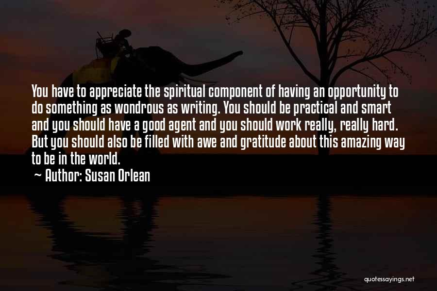 Opportunity And Hard Work Quotes By Susan Orlean