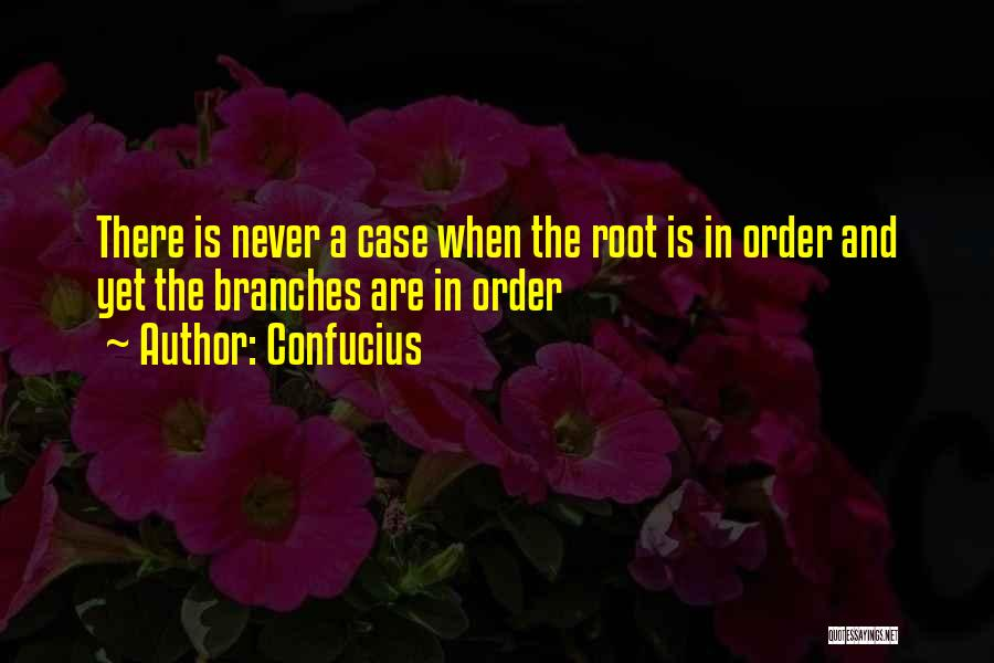 Order In Chaos Quotes By Confucius