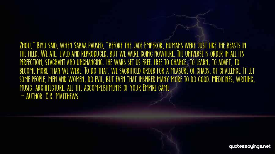 Order In Chaos Quotes By G.R. Matthews