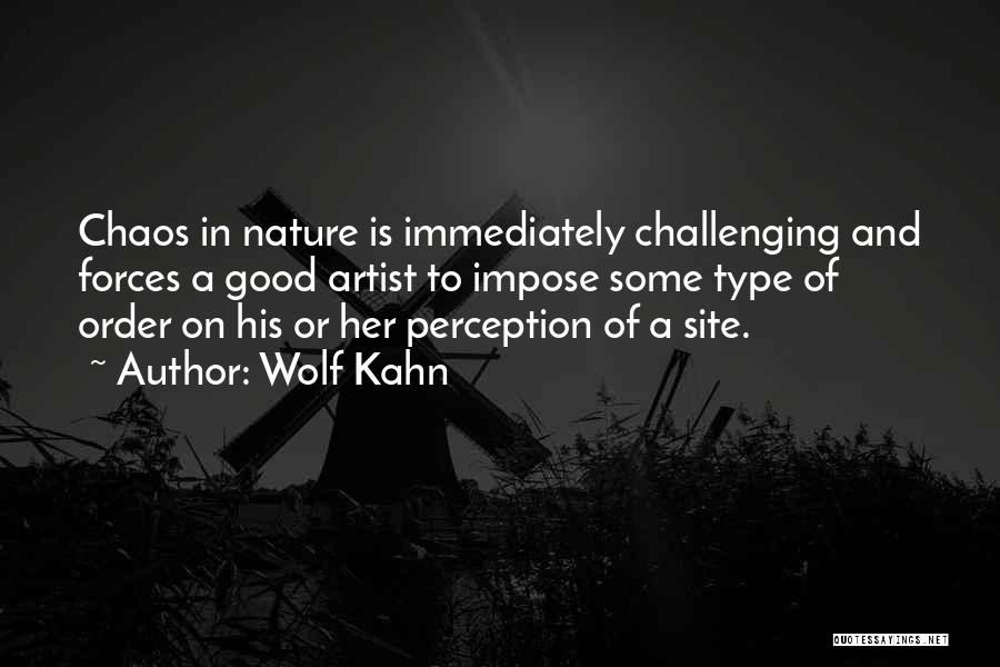 Order In Chaos Quotes By Wolf Kahn