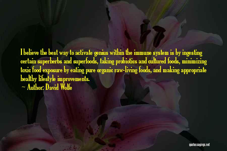 Organic Foods Quotes By David Wolfe