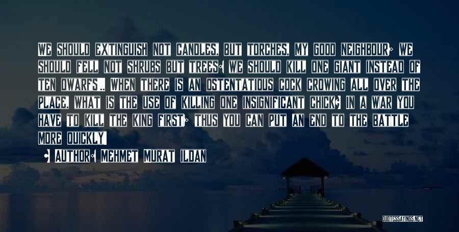 Ostentatious Quotes By Mehmet Murat Ildan