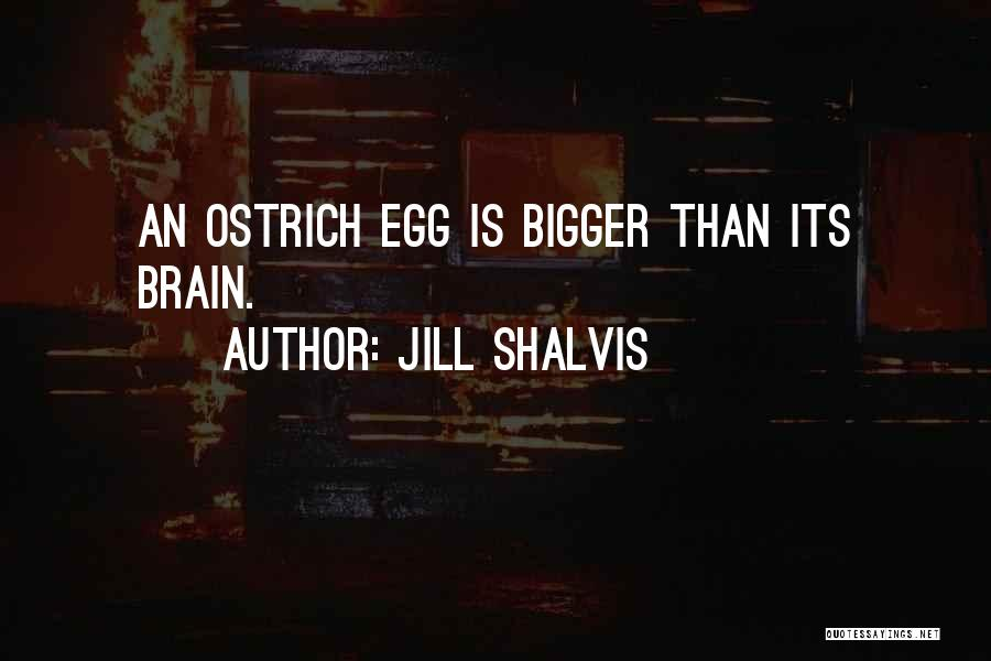 Ostrich Egg Quotes By Jill Shalvis