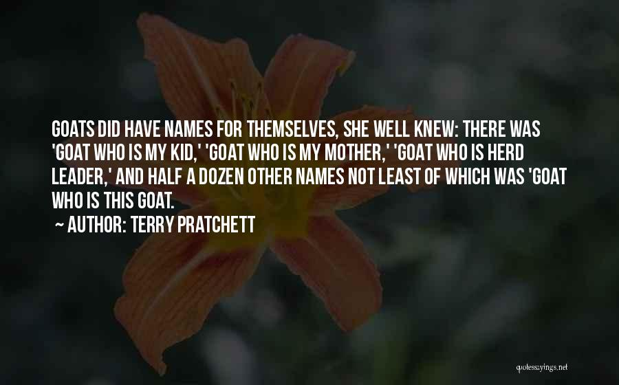 Other Half Quotes By Terry Pratchett