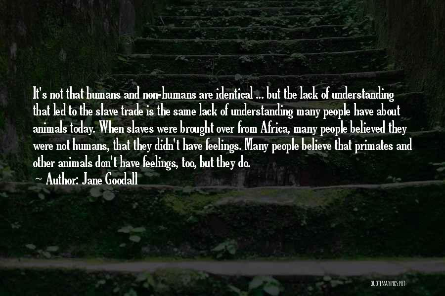 Other People's Feelings Quotes By Jane Goodall