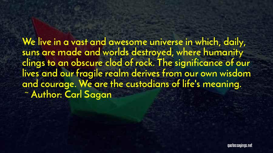 Our Daily Lives Quotes By Carl Sagan