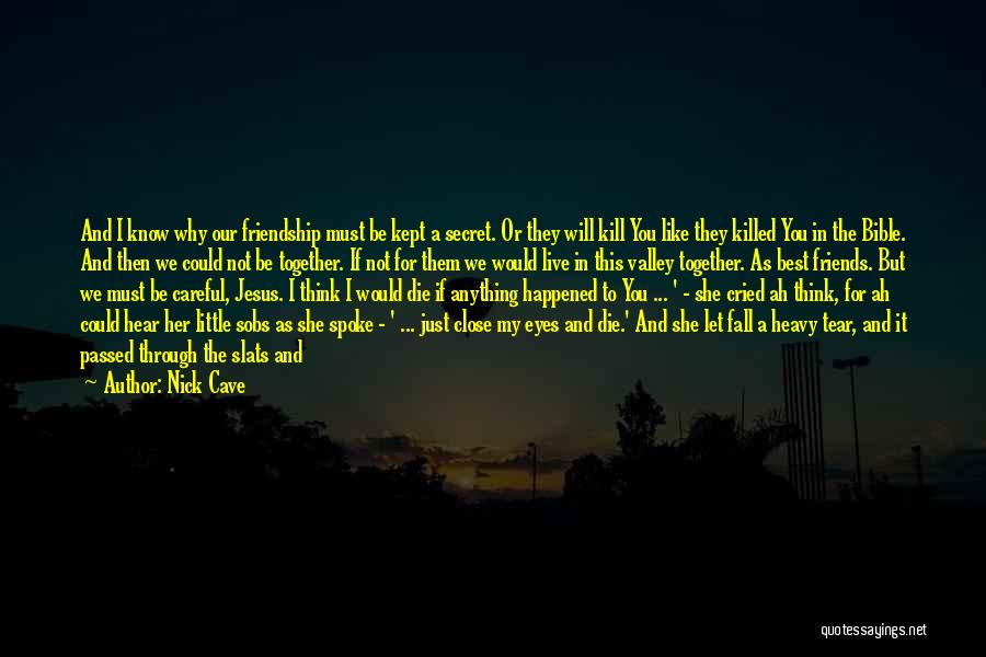 Our Friendship Like Quotes By Nick Cave