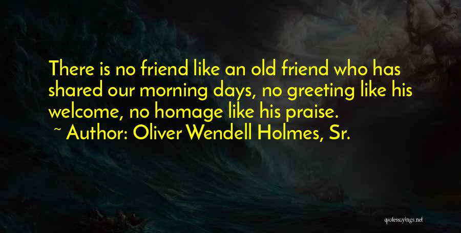 Our Friendship Like Quotes By Oliver Wendell Holmes, Sr.