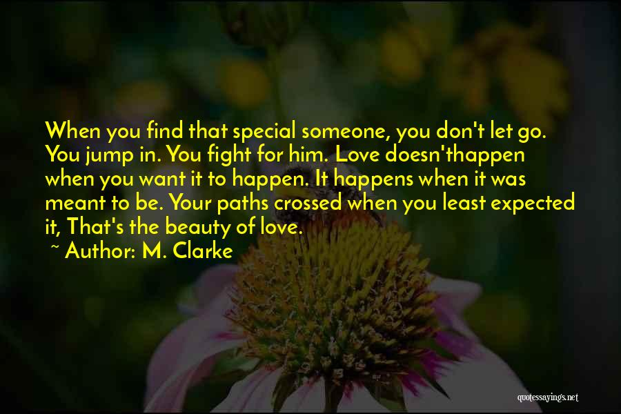 Our Paths Crossed Love Quotes By M. Clarke