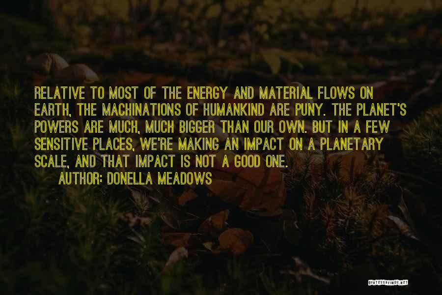 Our Planet Earth Quotes By Donella Meadows