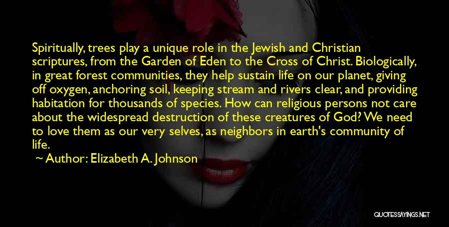 Our Planet Earth Quotes By Elizabeth A. Johnson