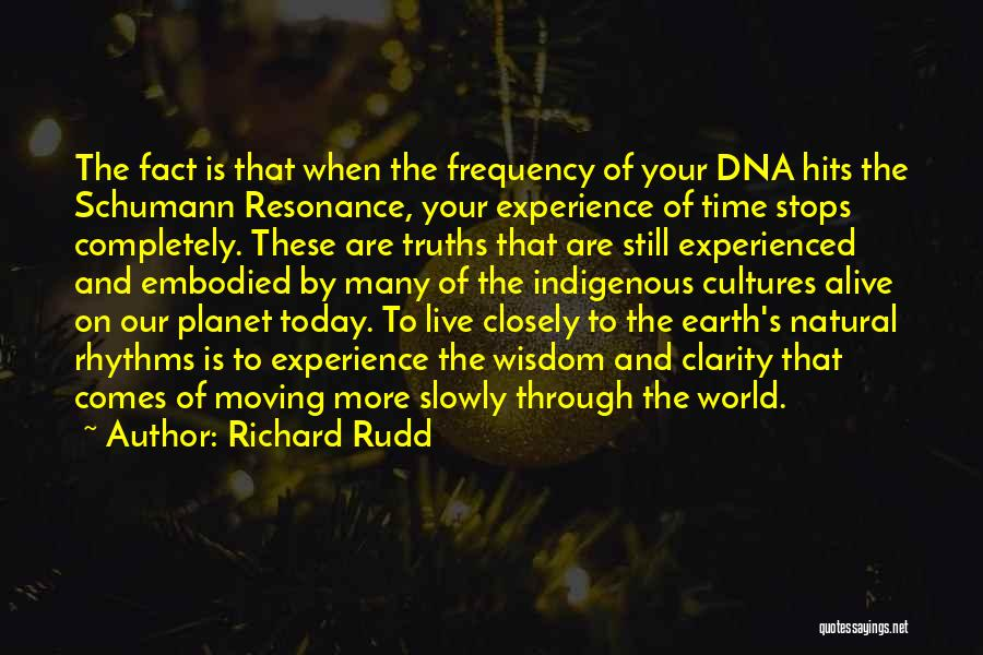 Our Planet Earth Quotes By Richard Rudd
