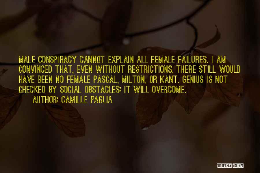 Overcoming Obstacles Quotes By Camille Paglia