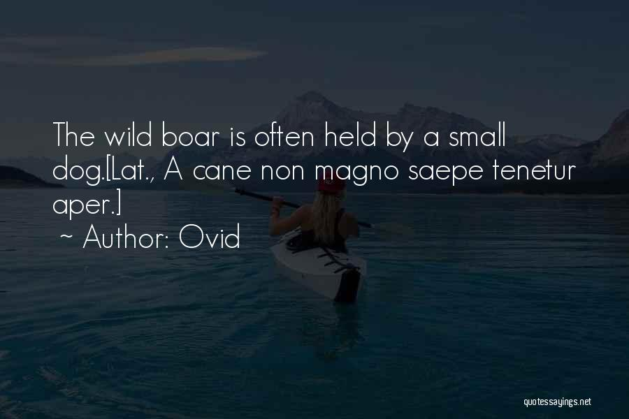 Ovid Quotes 976966