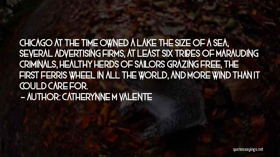 Owned Quotes By Catherynne M Valente