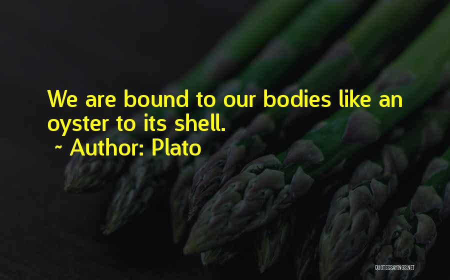 Oysters Quotes By Plato