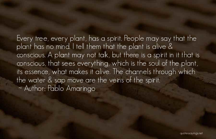 Pablo Amaringo Quotes 1500945