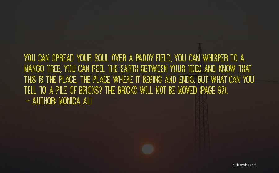 Paddy Field Quotes By Monica Ali