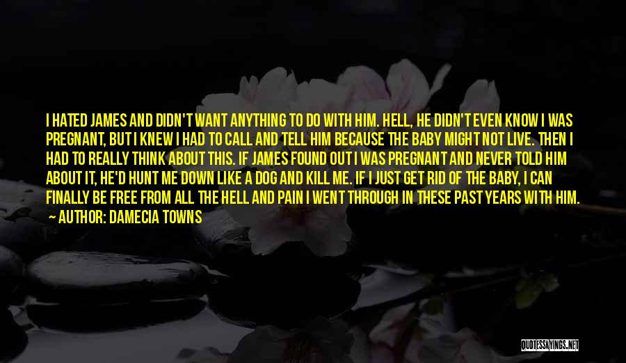 Pain From The Past Quotes By Damecia Towns
