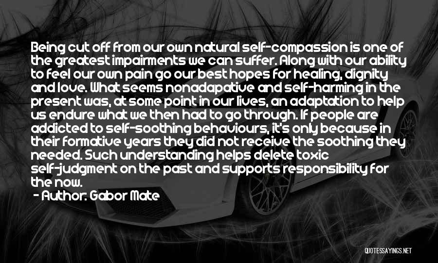 Pain From The Past Quotes By Gabor Mate
