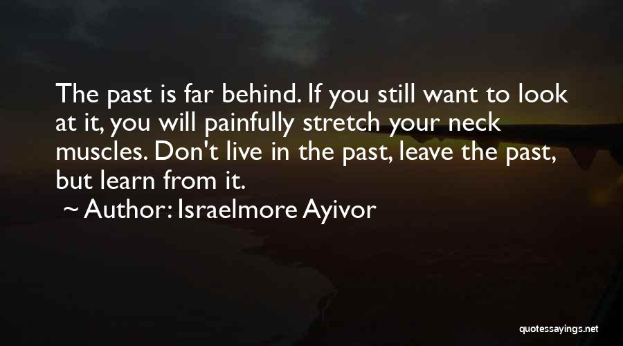 Pain From The Past Quotes By Israelmore Ayivor