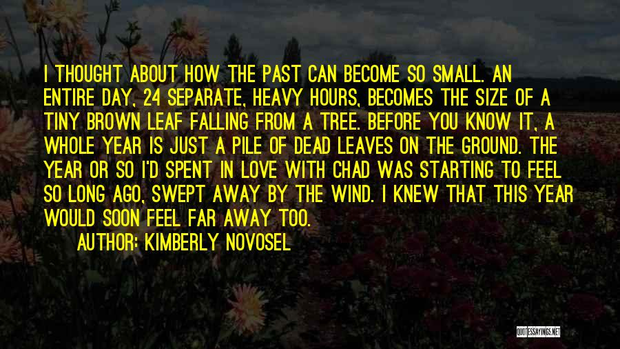 Pain From The Past Quotes By Kimberly Novosel