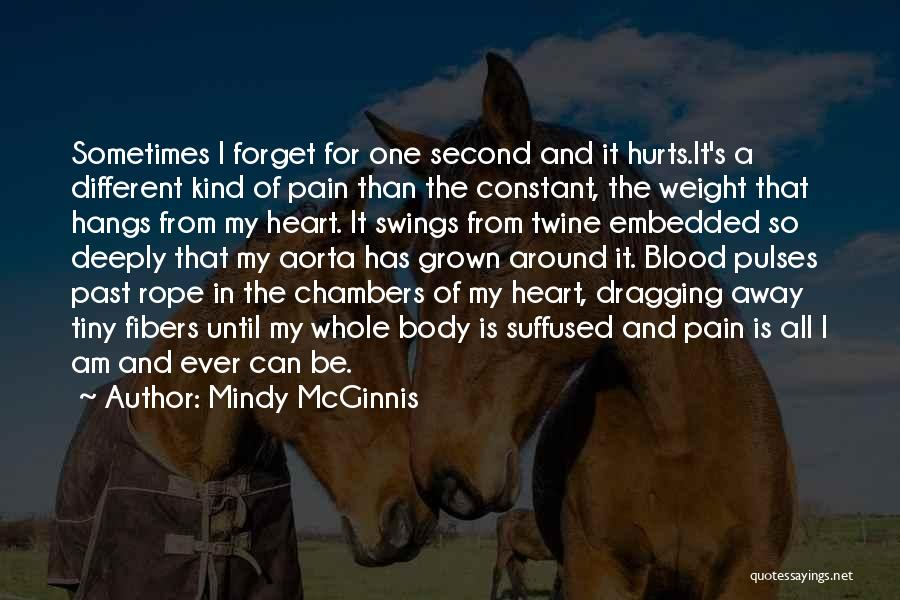 Pain From The Past Quotes By Mindy McGinnis