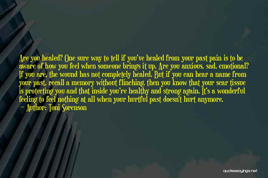 Pain From The Past Quotes By Toni Sorenson