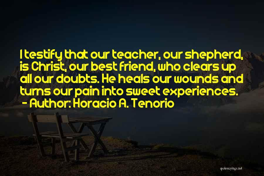 Pain Heals Quotes By Horacio A. Tenorio