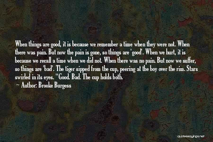 Pain In Eyes Quotes By Brooke Burgess