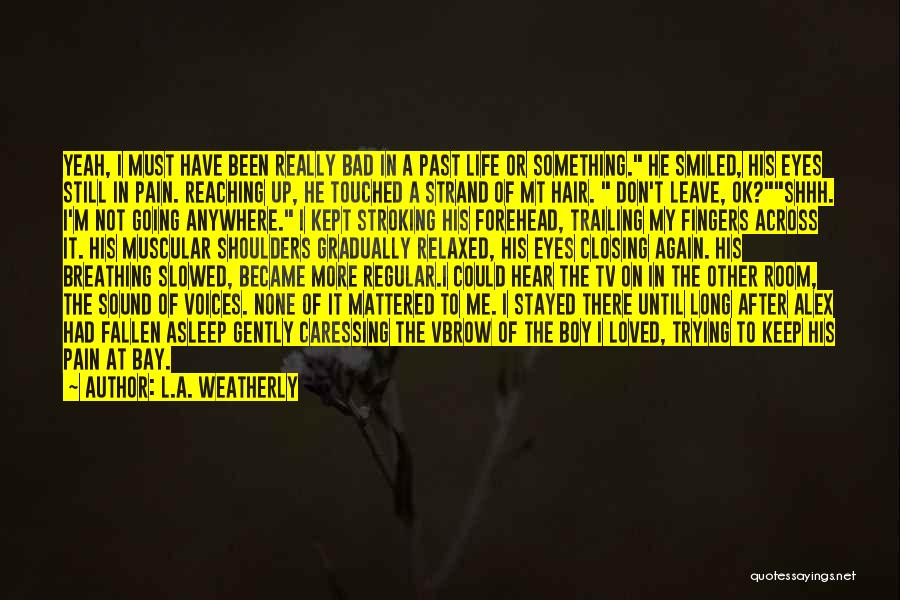 Pain In Eyes Quotes By L.A. Weatherly