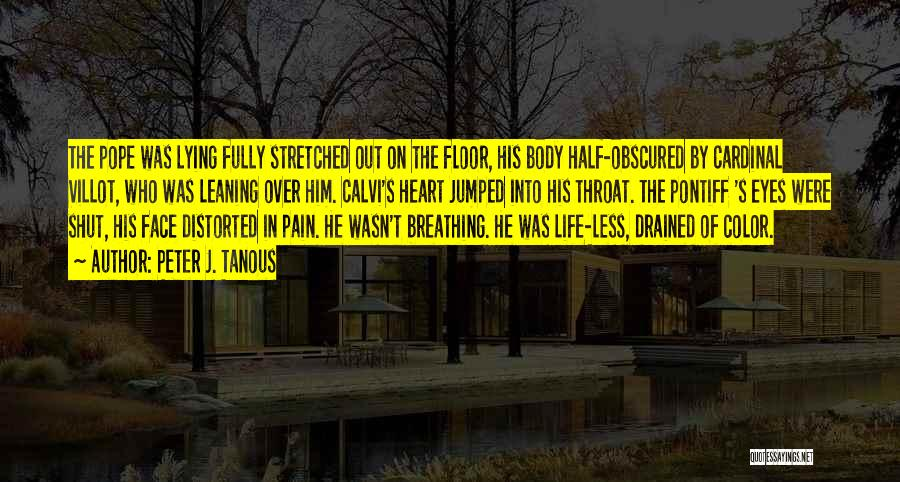 Pain In Eyes Quotes By Peter J. Tanous